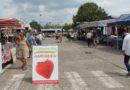 Veel volk en een gezellige sfeer op de eerste feestmarkt aan het Fort 3 in Borsbeek